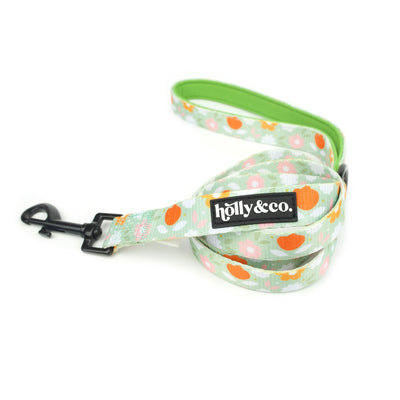 Holly & Co Flower Power Lead - Maggies Dog Wellness