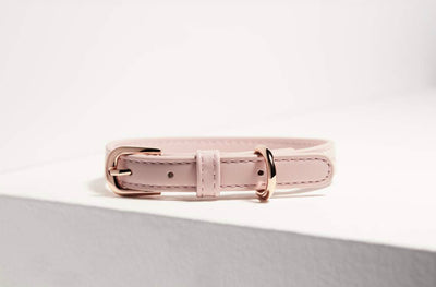 St Argo Blush Pink Collar - Maggies Dog Wellness