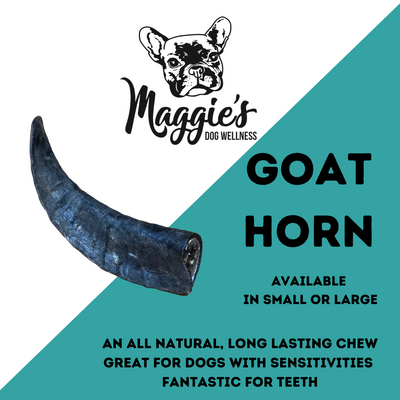 Goat Horn - Maggies Dog Wellness
