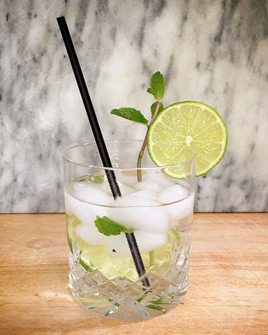 Mint Gin and Tonic