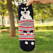 Load image into Gallery viewer, Dog Socks (5 Styles)