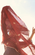 Load image into Gallery viewer, Resham Phool Dupatta