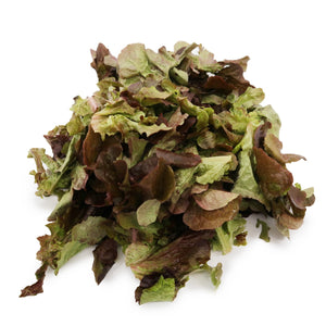 Batavia Lettuce (Organically Farmed) 200g