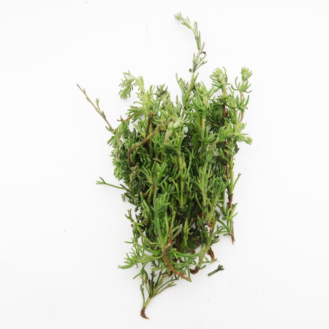 Wild Rosemary (Organically Farmed) 30g