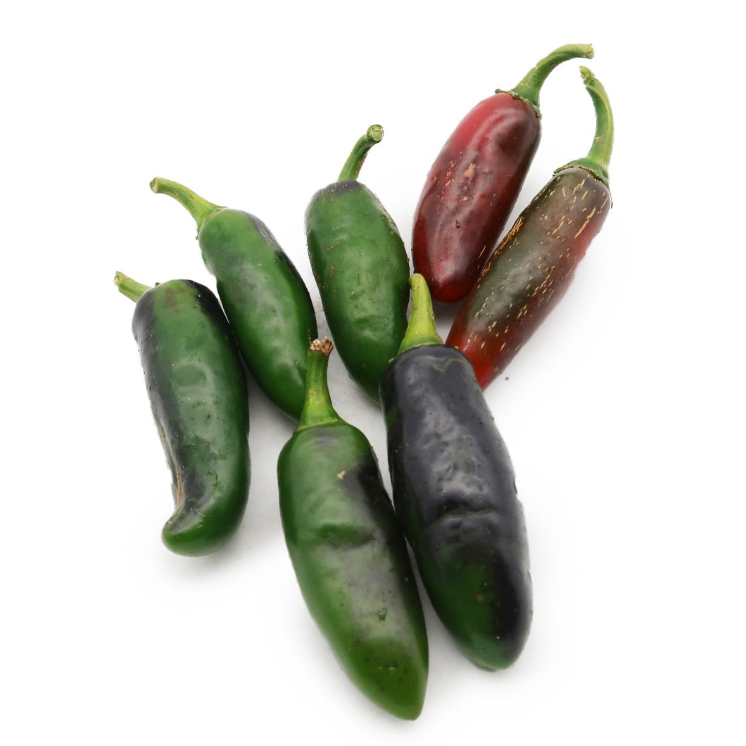 Jalapeno Chilli (Organically Farmed) 150g