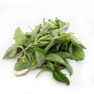 Perennial Basil (Organically Farmed) 30g