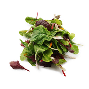 Baby Brightlights Chard 200g