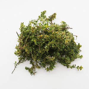 Lemon Thyme (Organically Farmed) 30g