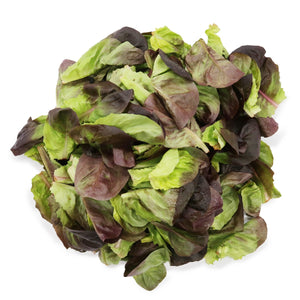 Salinova Lettuce (Organically Farmed) 200g