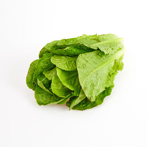 Cos Lettuce 1 Head