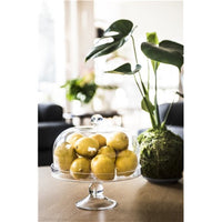 Maxwell & Williams Diamante Glass Cake Stands with Dome