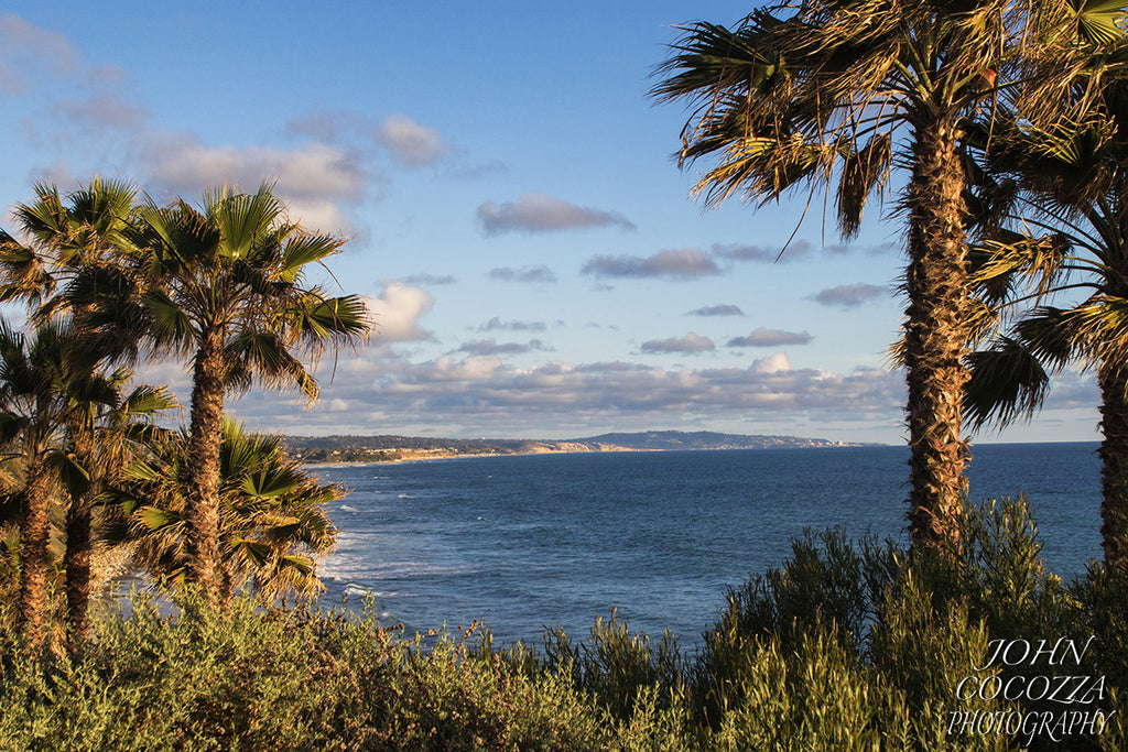 swamis beach encinitas california photos for sale as artwork for offices and homes