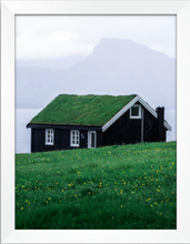 Load image into Gallery viewer, Eco House Print