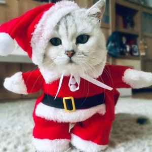 Winter Christmas Pet Cat Costumes Funny Santa Claus Clothes For Small Cats Dogs Xmas New Year Cat Clothing Kitty Kitten Outfits - primeroar