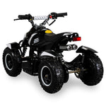 COBRA ATV KINDERQUAD POCKETQUAD MINIQUAD QUAD POCKET BIKE 49CC E-START 2-TAKT / Farbwahl