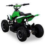 RACER ELEKTRO 800W ATV KINDERQUAD POCKETQUAD MINIQUAD QUAD POCKET BIKE Farbwahl