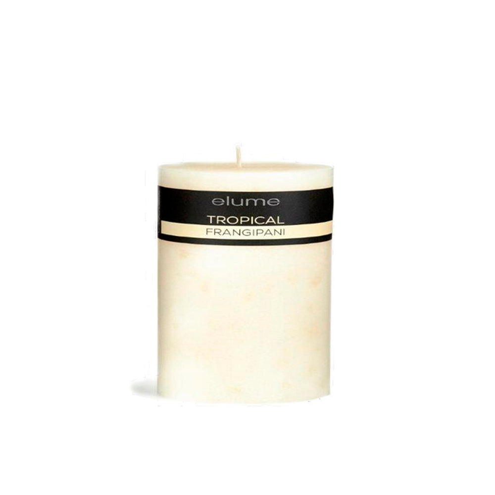 TROPICAL FRANGIPANI 3x3 CANDLE