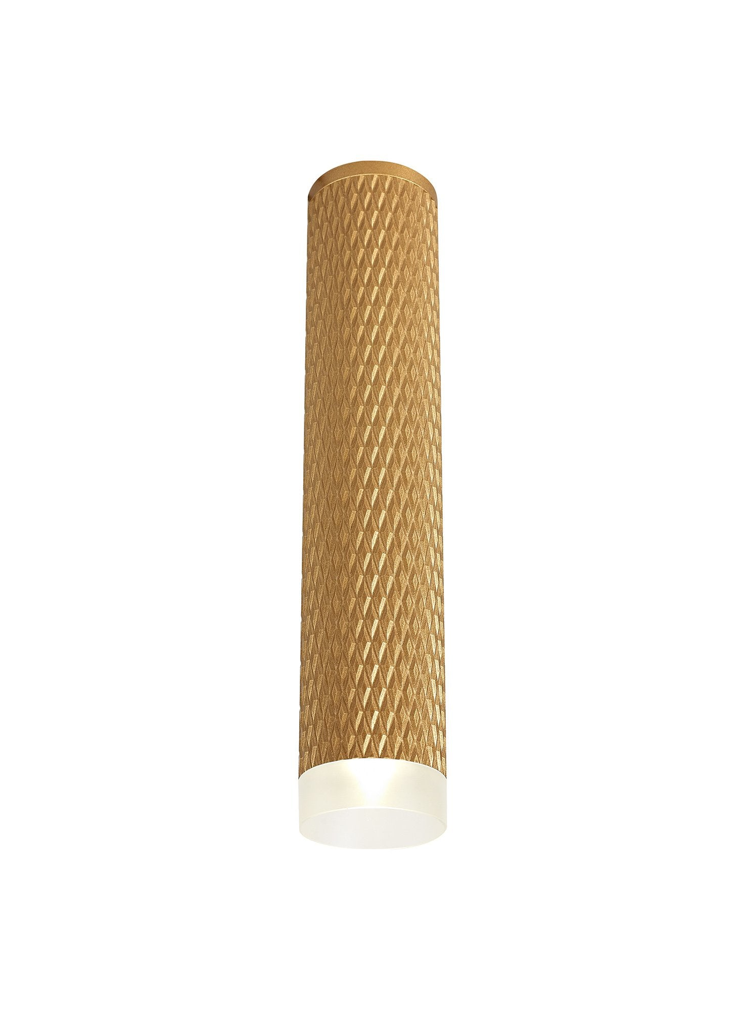 DELPH 1 Light 30cm Surface Mounted Ceiling GU10, Champagne Gold/Acrylic Ring