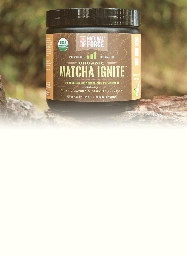 Matcha Ignite