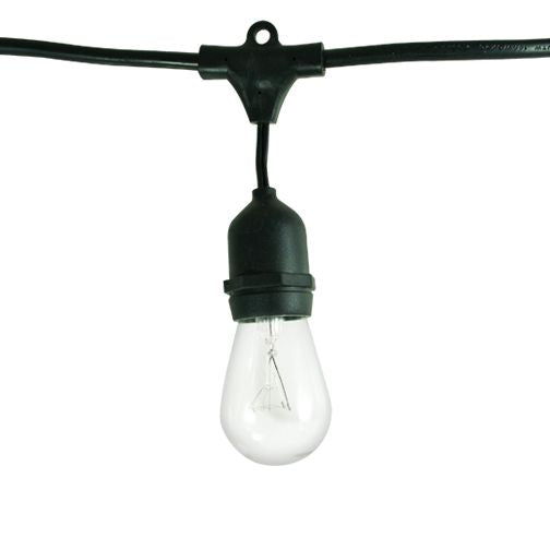 Bulbrite 810002 - 48ft cord of string lights with Medium Screw Bulbs Included