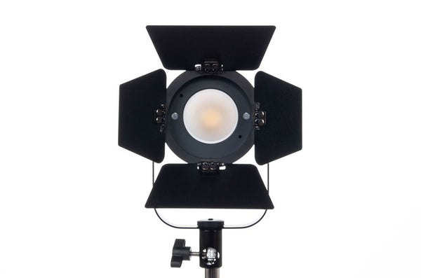 Fiilex P360 Pro Portable LED Light