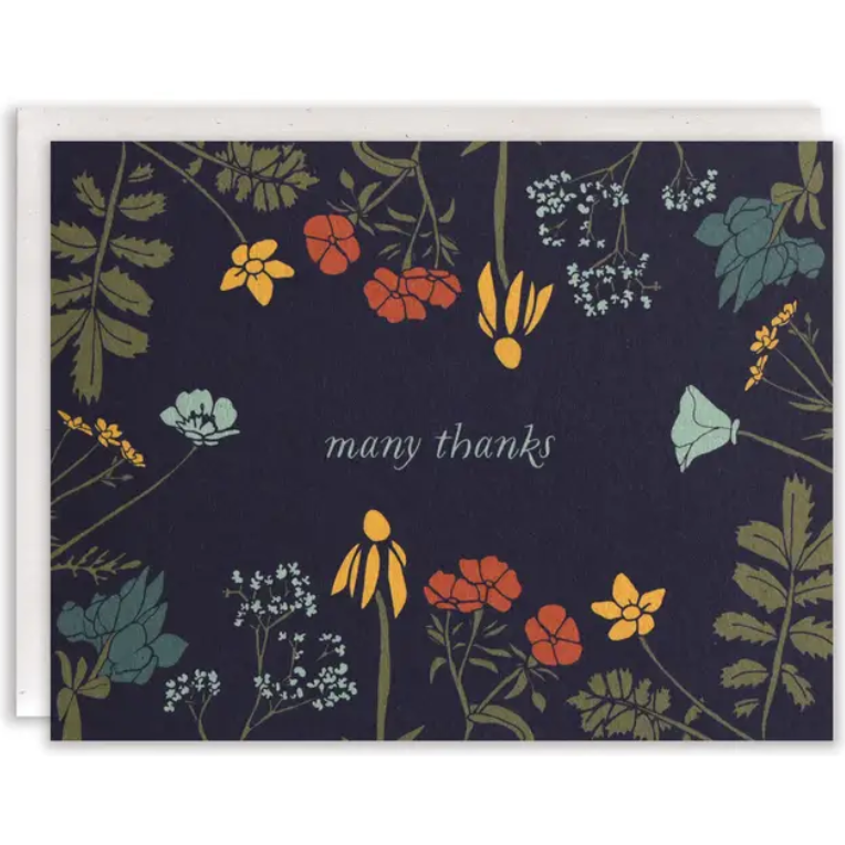 Many Thanks Greeting Cards / Boxed Set of 8