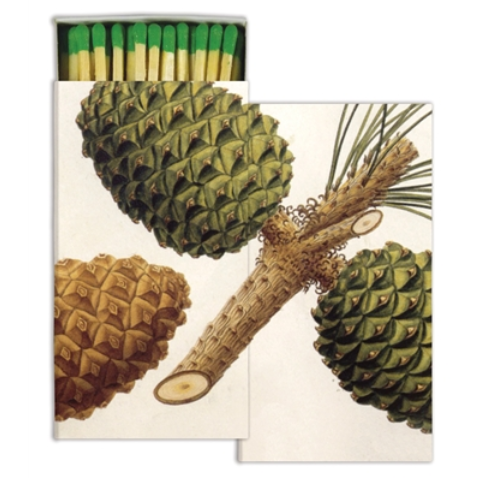 Pinecone Match Box