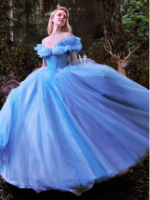 2015 Cinderella Ball Gown Evening Dress – JoJo Shop