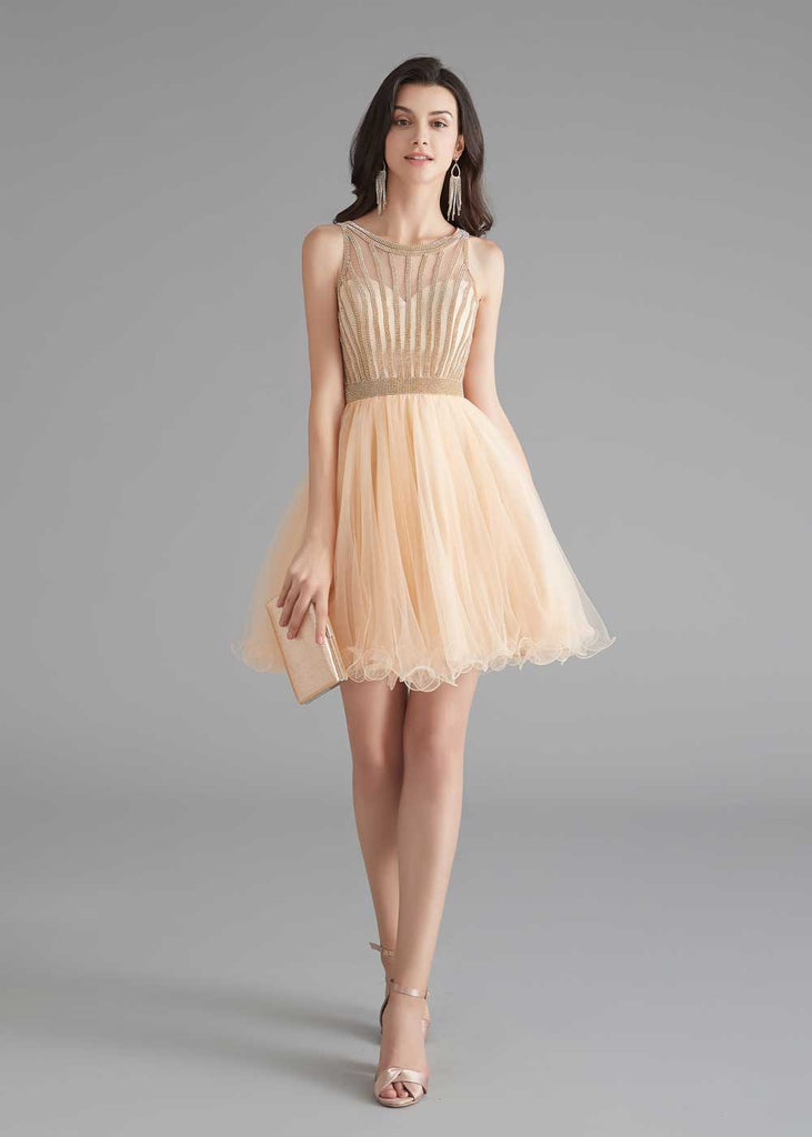 Chic Short Champagne Tulle Evening Dress
