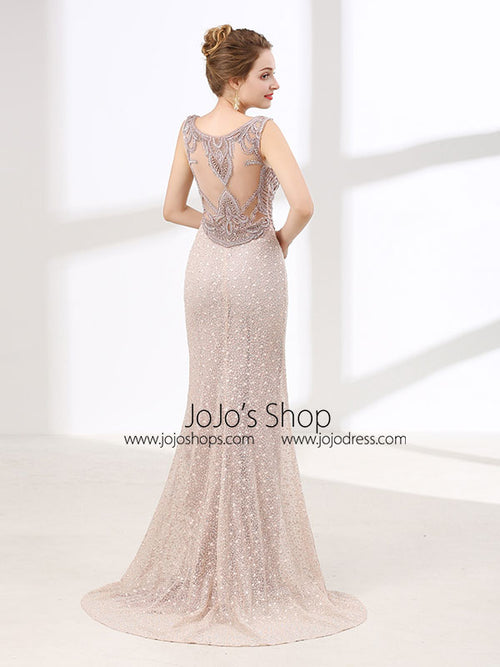 Elegant Long Formal Prom Evening Dress wtih Beautiful Back Design