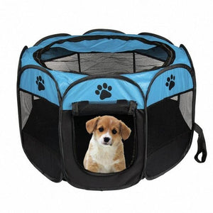 blue and black dog bed