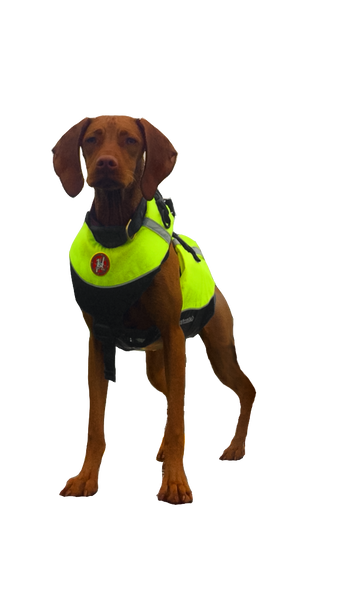 First Watch AK-1000 K-9 Float Vest