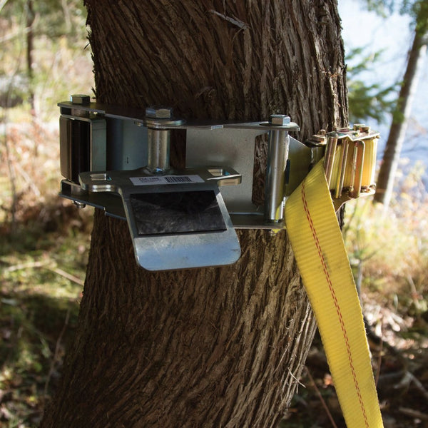 TREE-MOUNT WINCH ANCHORING SYSTEM