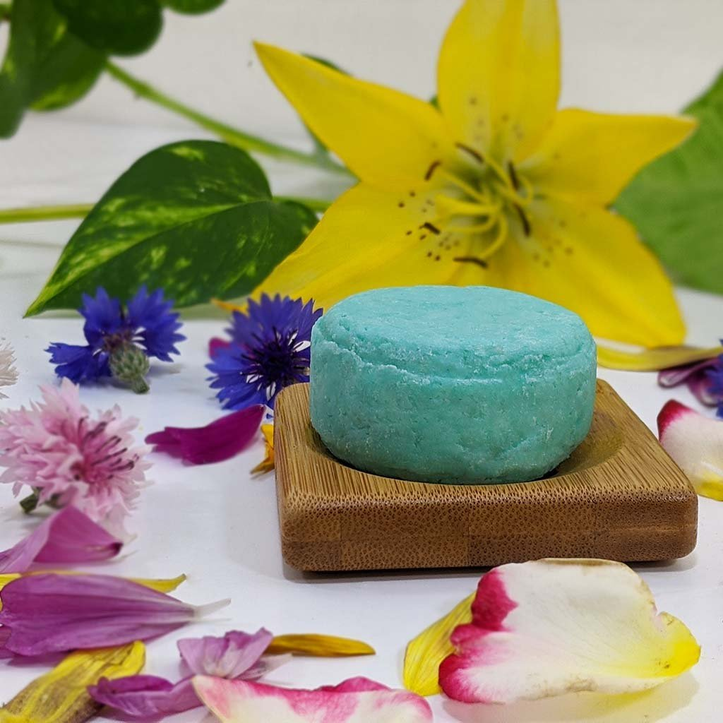 Normal Hair Shampoo Bar - Plant Based/VEGAN - Zero Waste Outlet