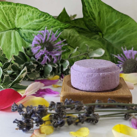 Oily Hair Shampoo Bar - Plant Based/VEGAN - Zero Waste Outlet