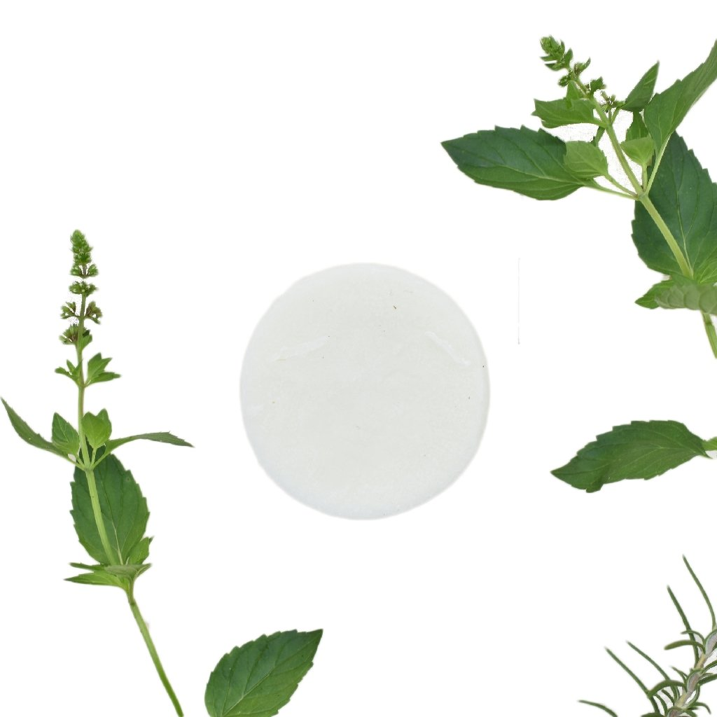 Rosemary & Mint Conditioner Bar - Vegan - Zero Waste Outlet