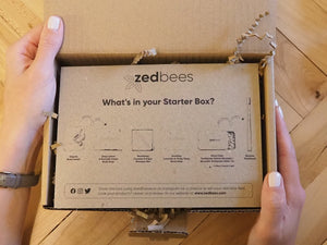 What's In Your Zero Waste Bathroom Starter Box?