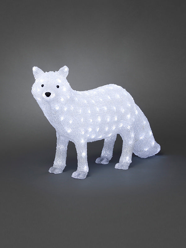 70cm Acrylic LED Polar Fox