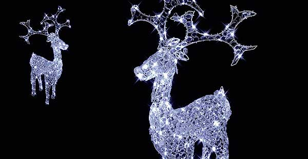 Buy Lit Christmas Products Online