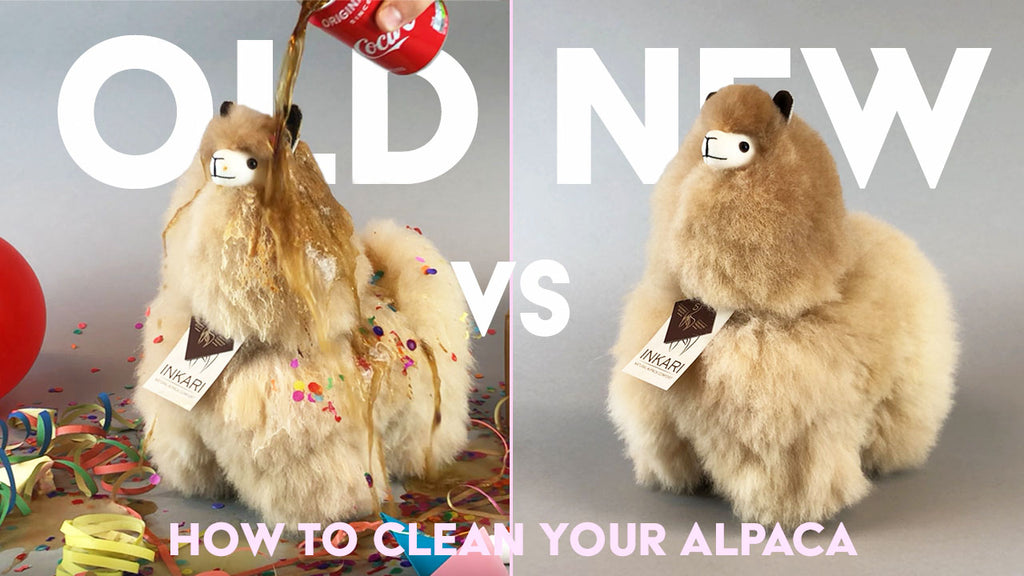 'Refresh' your alpaca - How To Clean Your Own Inkari Alpaca