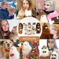 ❤ Alpaca Toy ❤ Stuffed Animal ❤ Macchiato