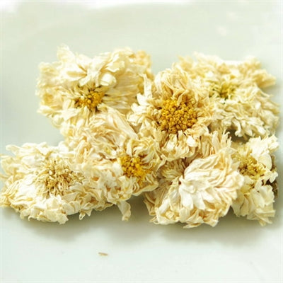 Premium Hang Bai Gong Chrysanthemum Flower