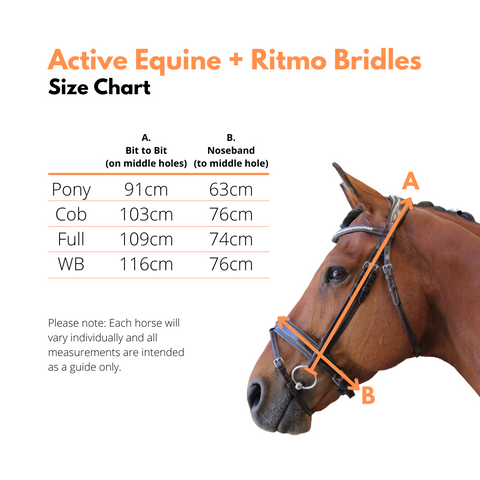 Bridle Size Chart with fitting tips | Active Equine Australia