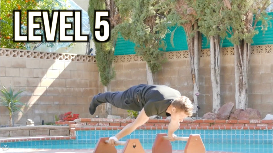 Level 5 Planche Workout