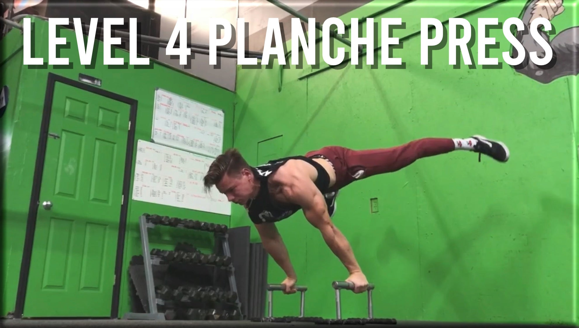 Level 4 Planche Press