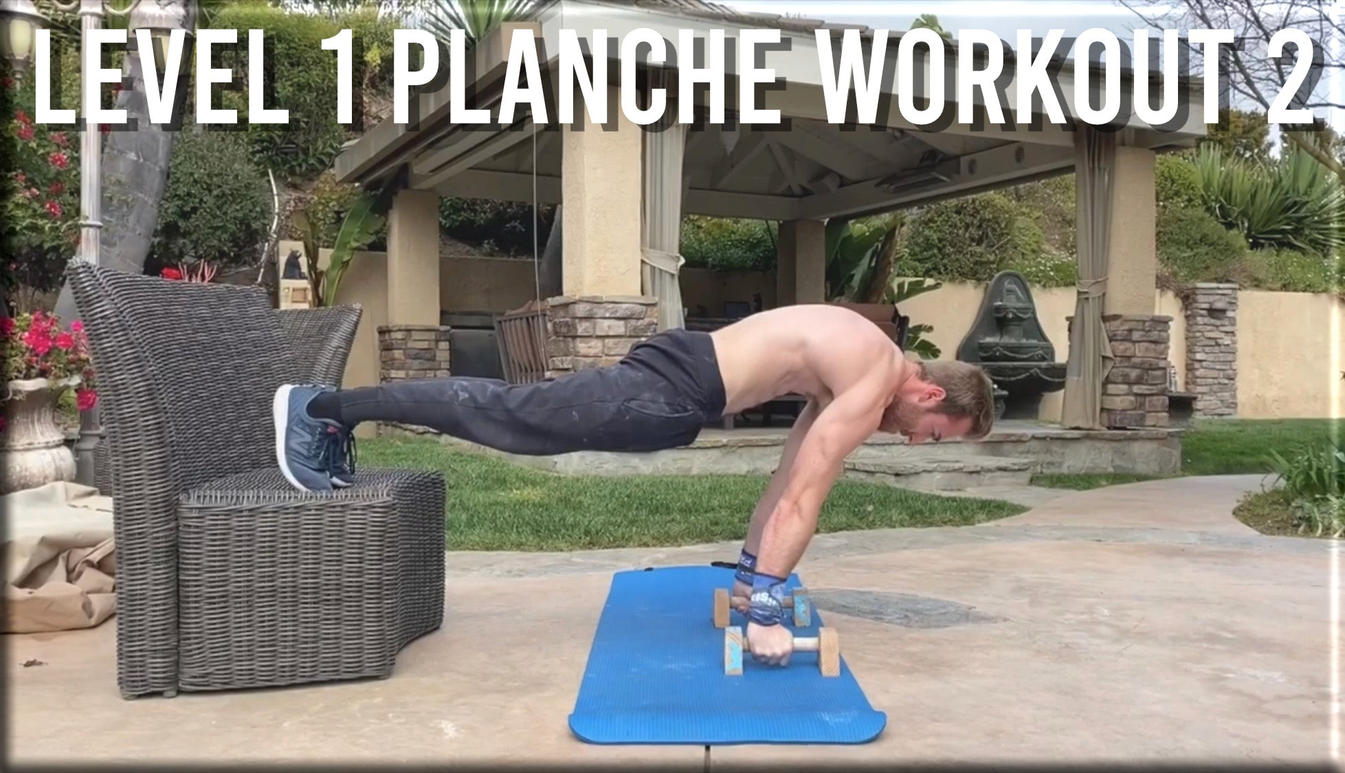 Level 1 Planche Workout 2