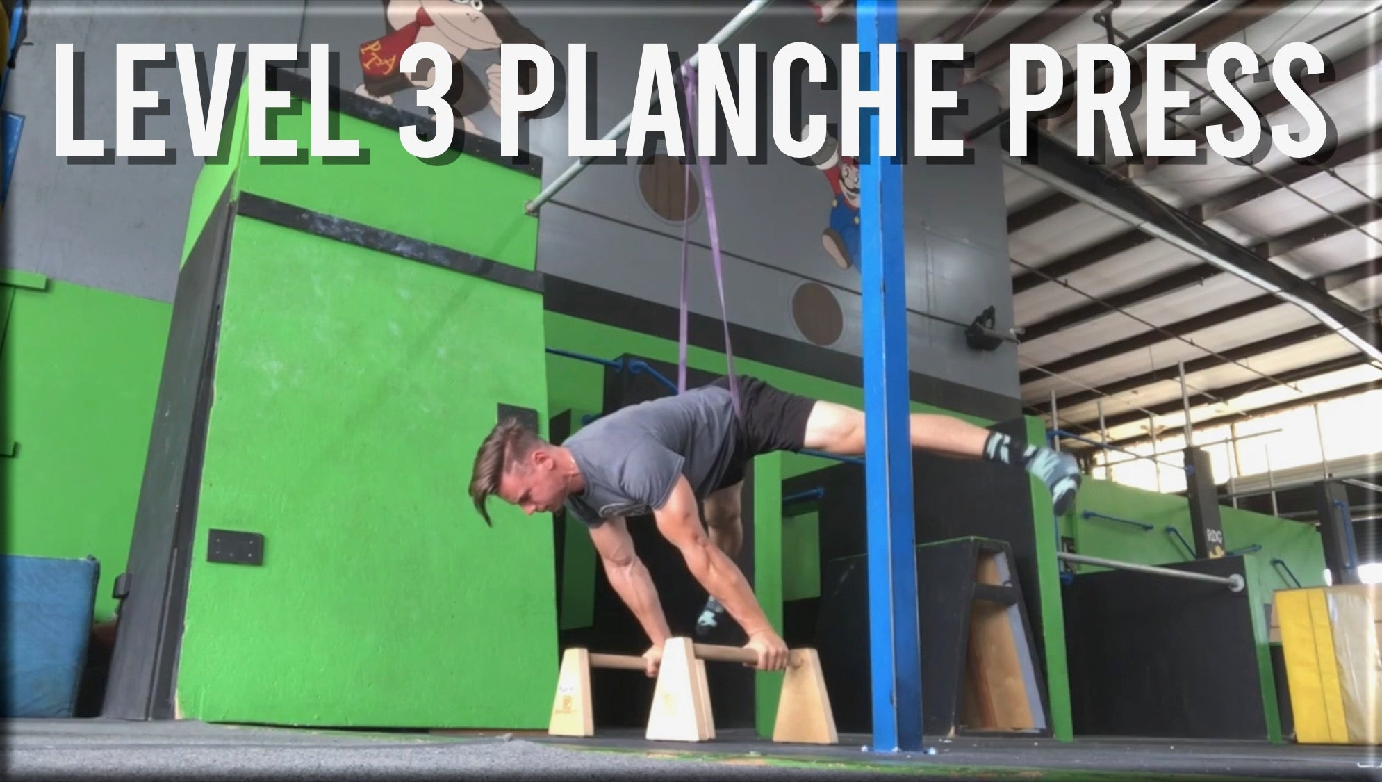 Level 3 Planche Press Workout