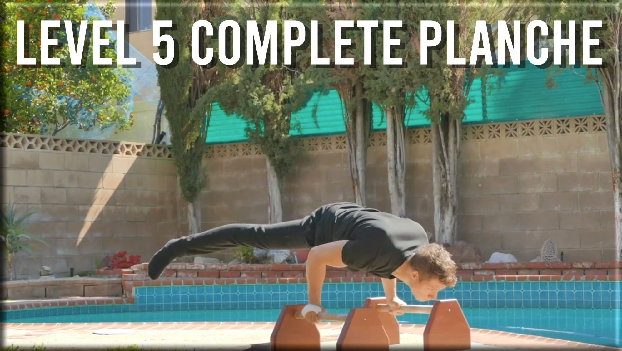 Level 5 Complete Planche