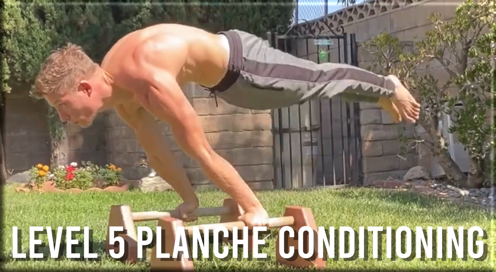 Level 5 Planche Conditioning