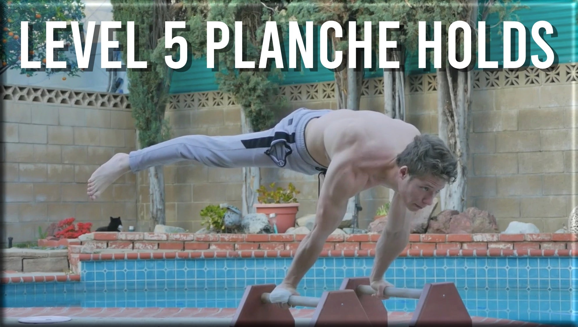 Level 5 Planche Holds